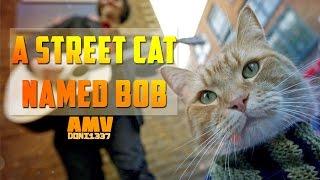 a street cat named bob / уличный кот по кличке боб [AMV]