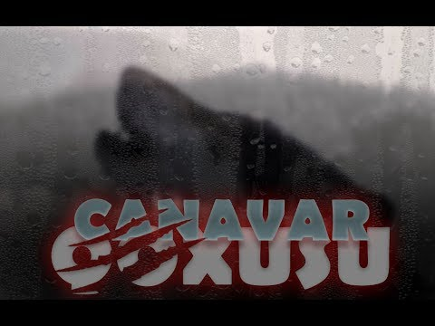 CANAVAR QOXUSU (original versiya) TAM FILM