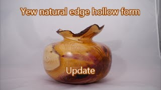 Woodturning Yew Hollow Form Follow Up