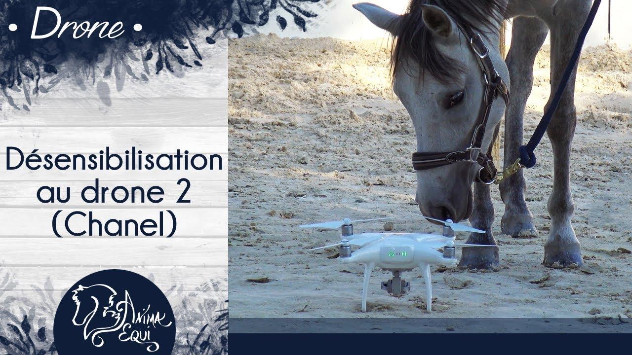 33b7fb60d2a6d PRATIQUE • Chanel   Désensibilisation au drone 2 - YouTube