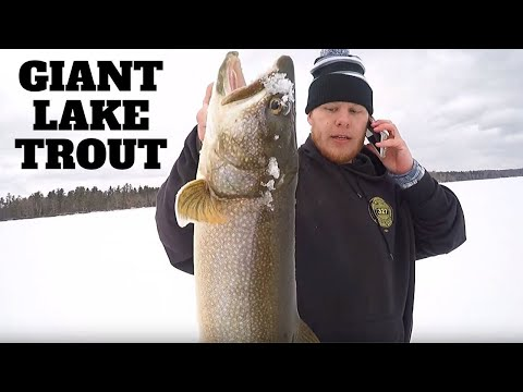 Maine Ice Fishing | GIANT LAKE TROUT