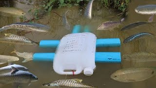 Simple Fish Trap - Creative Girl Make Fish Trap Using PVC And Plastic Bottle To Catch Fish