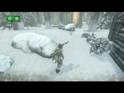 PS4 Rise Of The Tomb Raider -  Adventure Besties Trophy