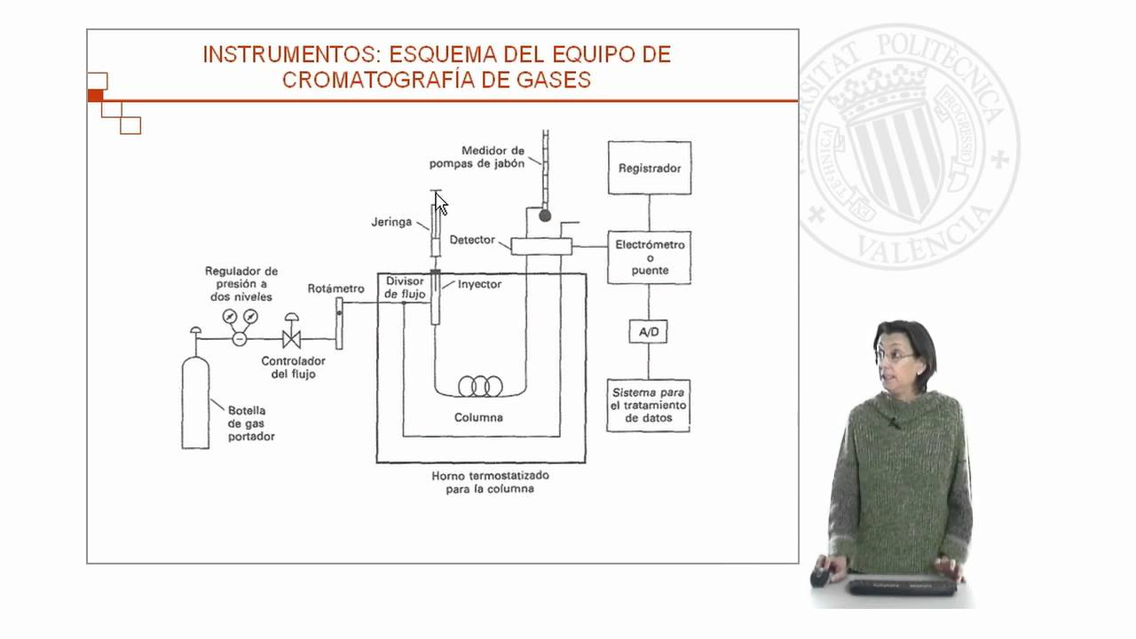 CROMATOGRAFIA DE GASES FUNDAMENTO PDF DOWNLOAD