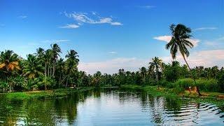 Vidya vox  ft.vandana Iyer  Be Free|| Pallivaalu Bhadravattakam Kerala Folk Song