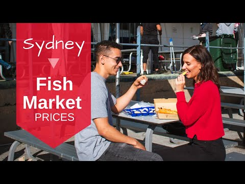 Sydney Fish Market Prices - QUICK GUIDE