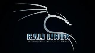 খুব সহজেই আপনার অ্যান্ড্রয়েড ফোন এ Kali Linux ইনস্টল করেনিন আর হয়ে যান হ্যাকিং এর রাজা। 2017