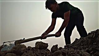 Life In A Village of India / Day- 4 Dhana ka kheta..Lifestyle vlog...