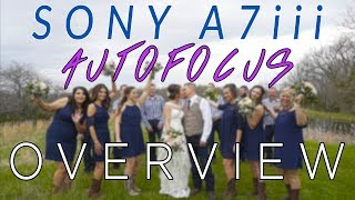 How Accurate is the Sony A7iii Autofocus for Video? My First Impressions of the Sony a7iii Autofocus