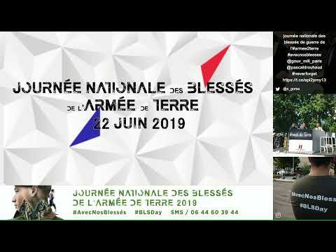 Journée nationale des blessés de l'armée de Terre 2019