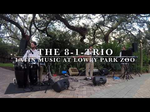 The 8-1-Trio | Latin Music at Lowry Park Zoo