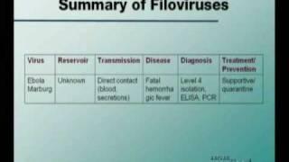 Microbiology Step1 Filoviridae