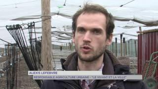 Agriculture : les fermes en villes de Saint-Cyr-l'Ecole