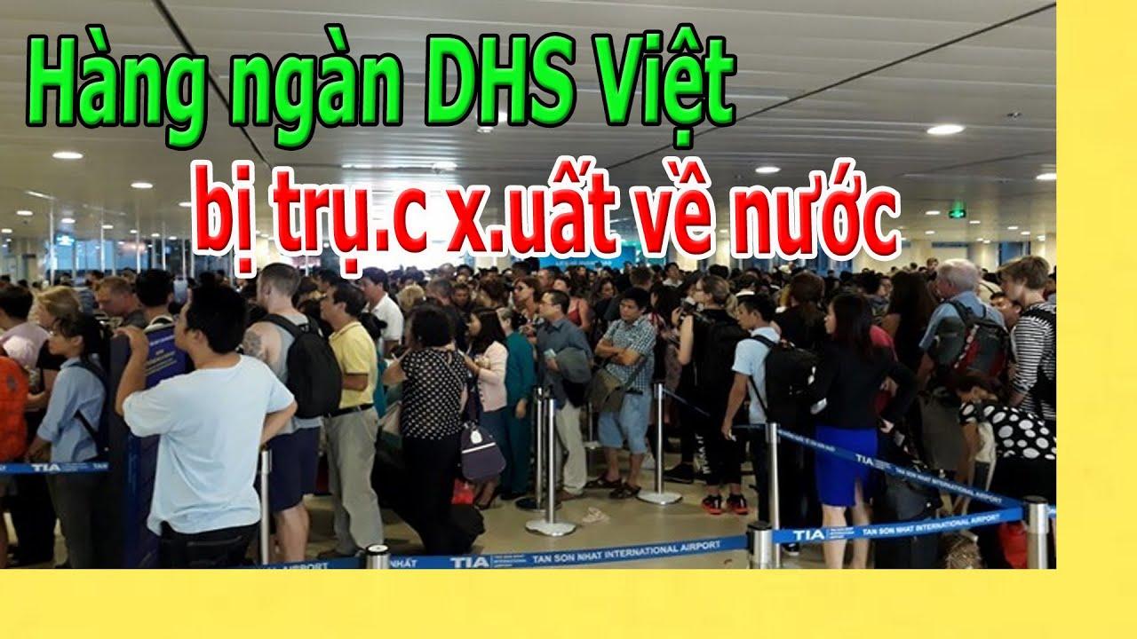 Hàng ngàn DHS Việt được cho về nước luôn