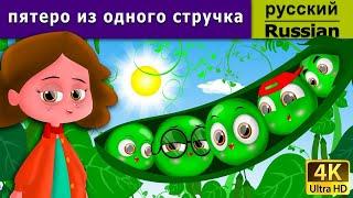 пятеро из одного стручка | сказки на ночь | дюймовочка | 4K UHD | русские сказки