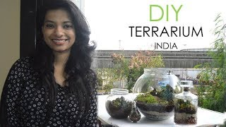 Terrarium DIY India l Miniature garden in glass bowl l Indoor closed terrarium basics l Ask Iosis