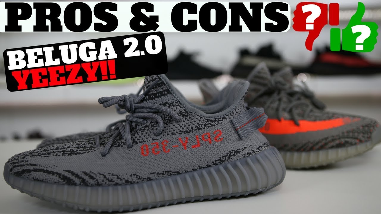 Go check out my Adidas Yeezy Boost 350 V2 Beluga 2.0 on feet