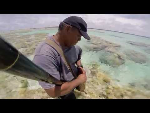 Namdrik Atoll Coconut Diaries VideoBlog 25 Fishing Methods