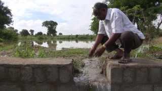 Model Farm - Water Literacy Foundation
