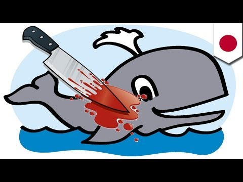DYING FOR SCIENCE: Japan cancels '14 hunt
