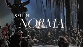 Norma at the Metropolitan Opera through December 16