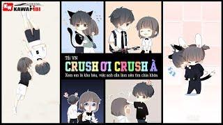 Crush Ơi Crush À - Tổi VN [ Official Lyric Video ]