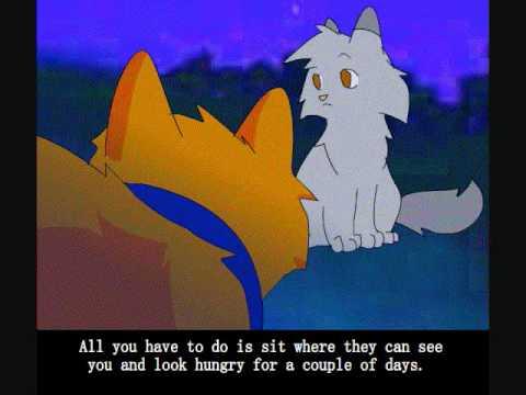 Коты воители стань диким смотреть все серии