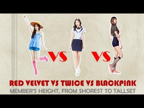 RED VELVET Vs TWICE Vs BLACKPINK Members' Height, From Shortest To Tallest