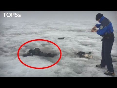 5 Insane Cases Where Bodies Have Been Found Frozen In Ice...