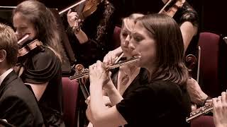 Mahler: Symphony No. 4 - I. Bedächtig, nicht eilen // Royal Liverpool Philharmonic / Vasily Petrenko