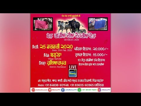 LIVE 🔴 BATHULLA (Hoshiarpur) OX RACES / ਬੈਲ ਗੱਡੀਆਂ ਦੀਆਂ ਦੋਹਰੀਆਂ  ਦੌੜਾ [ 25-Feb-2020 ] (1A)