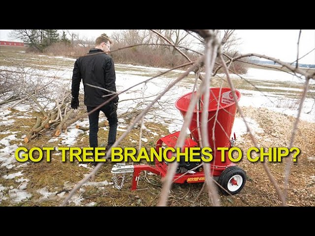 GOT TREE BRANCHES TO CHIP? - Here's the Best 4