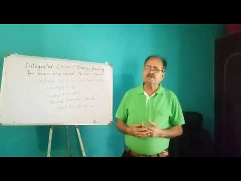 Integrated Cosmic Energy Healing Program - Learn these innovative techniques to heal brain disorders