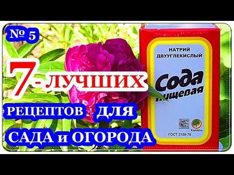 █ 7 ЛУЧШИХ РЕЦЕПТОВ // СОДА для ОГОРОДА и САДА ч.5 // Борьба с ТЛЁЙ и другие предложения.
