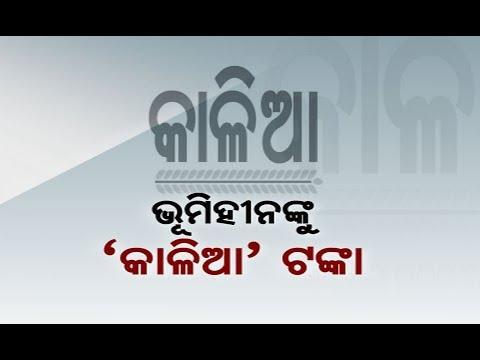 Reporter Live: Farmers Get Monetary Assistance Under KALIA Scheme