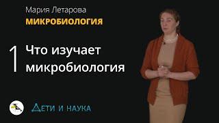 Что изучает микробиология? Мария Летарова - Микробиология #1