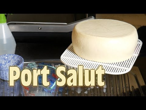 How to make Port Salut Style Cheese (aka St Paulin or Oka)