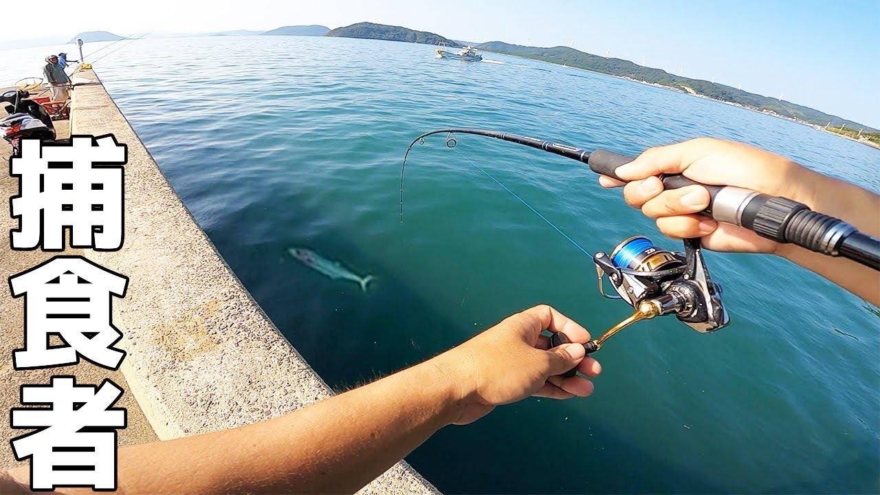 【離島生活】ウキ釣りしてたら突然大量の小魚が逃げだしたのでメタルジグを投げると…