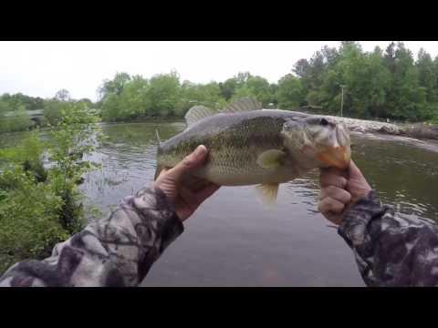 Fishing The Neuse River