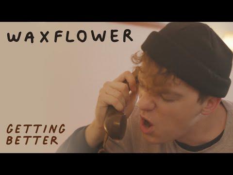 Waxflower - Sound In The Signals Interview
