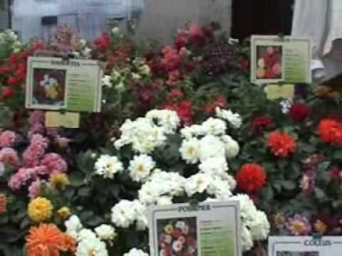 Le parc floral gascon