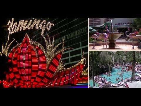 Flamingo Las Vegas Hotel and Casino - Caesars Entertainment - Las Vegas Hotel Tour from YouTube · High Definition · Duration:  13 minutes 18 seconds  · 16 000+ views · uploaded on 09/02/2017 · uploaded by Hotels Catalogue