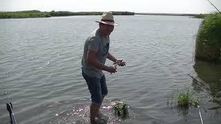 Супер рыбалка...Неплохой лещ...Рыбалка на реке Маныч...Рыбалка в Ростовской обл...