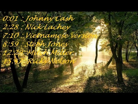 You are my sunshine - all best versions ( Johnny Cash, Nick Lachey,... )