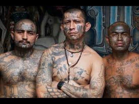 DOCUMENTALES,Honduras, renta de mara tarifa de muerte,DOCUMENTALES 2018,DOCUMENTALES INTERESANTES