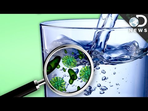 How Much Bacteria Is In Your Drinking Water?