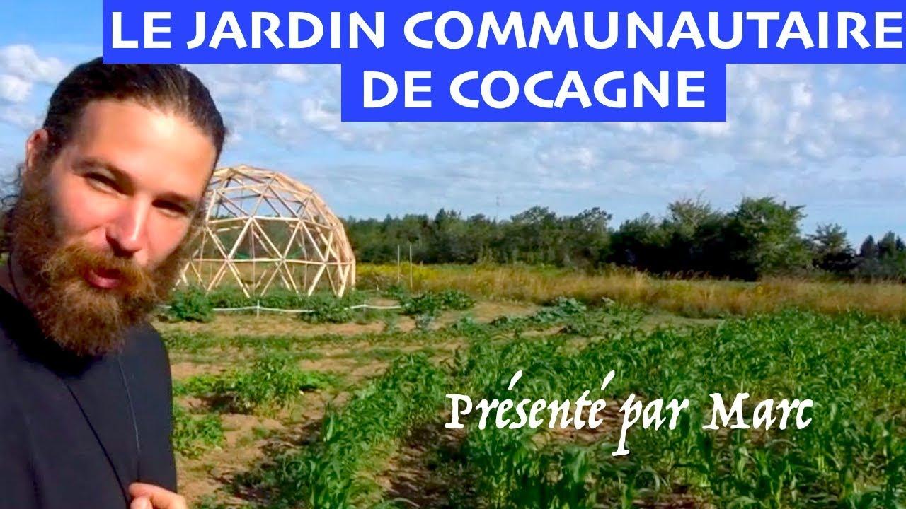 Le jardin communautaire de Cocagne - Une initiative ...