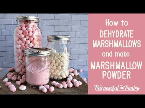 how-to-dehydrate-marshmallows-and-make-marshmallow-powder!