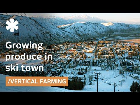 Ski town turns car park into vertical farm for local jobs/food