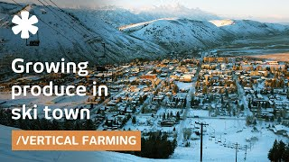 Ski town turns car park into vertical farm for local jobs/food